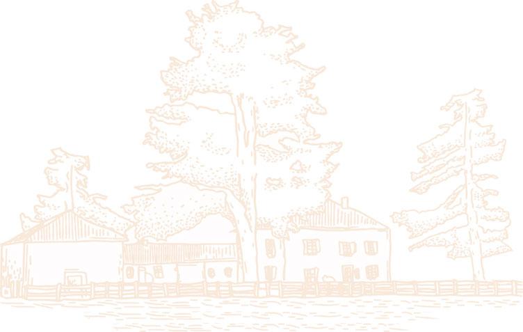 dessin village illustration